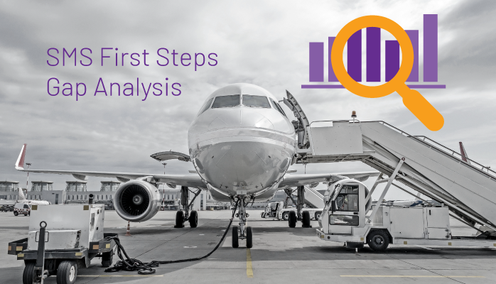 SMS First Steps - Gap Analysis